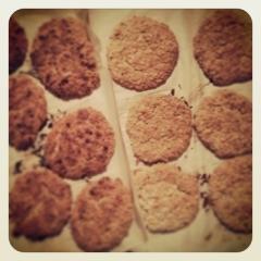 Biscuit au gruau