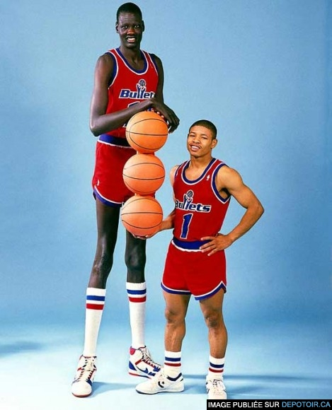 True or False: Half of All 7-Footers are in the NBA ?