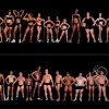 Howard Schatz's Images Of Athletes