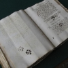 Paws, Pee and Mice: Cats among Medieval Manuscripts